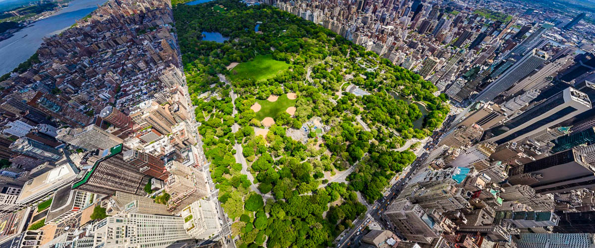 Central Park, New York, Arial view of tall buildings around a lush green park, New York view